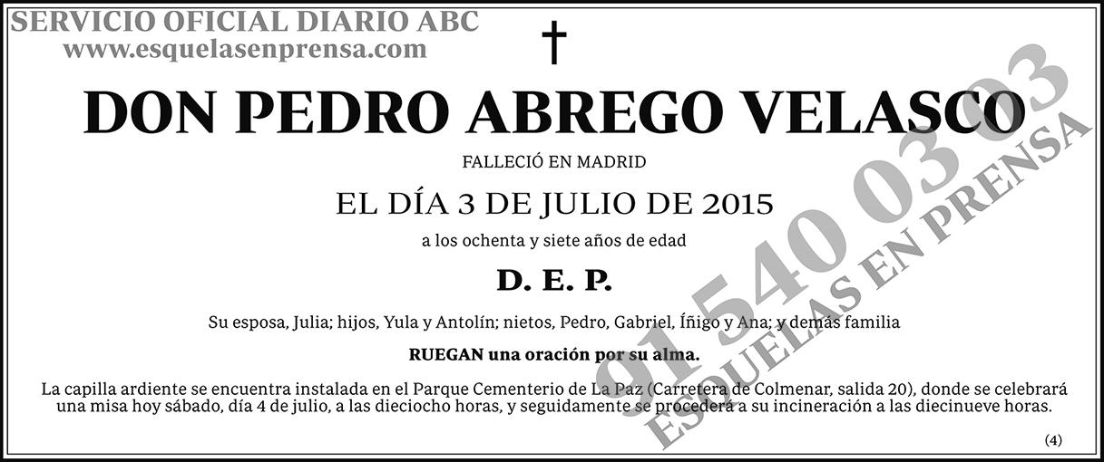 Pedro Abrego Velasco